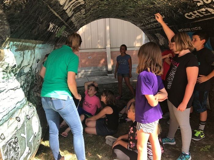 Colts Round-Up learning in the soil tunnel!