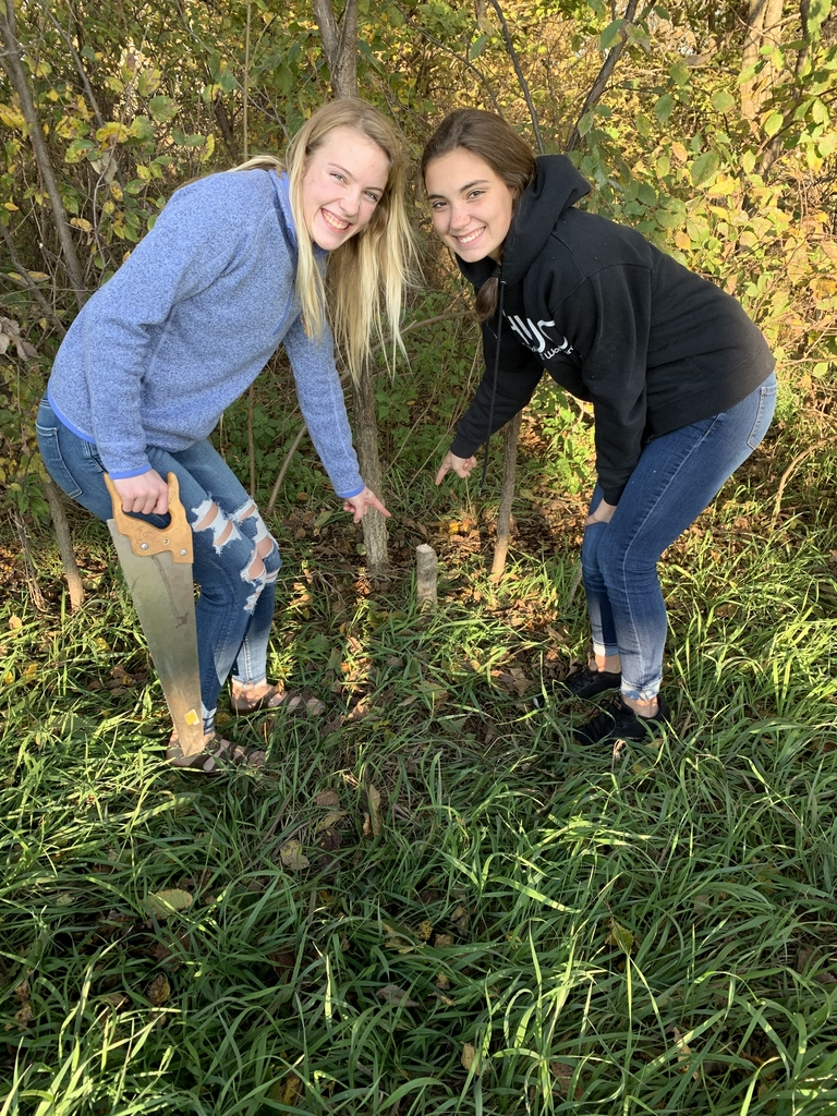 Cat and Maddy cut down their very first tree!
